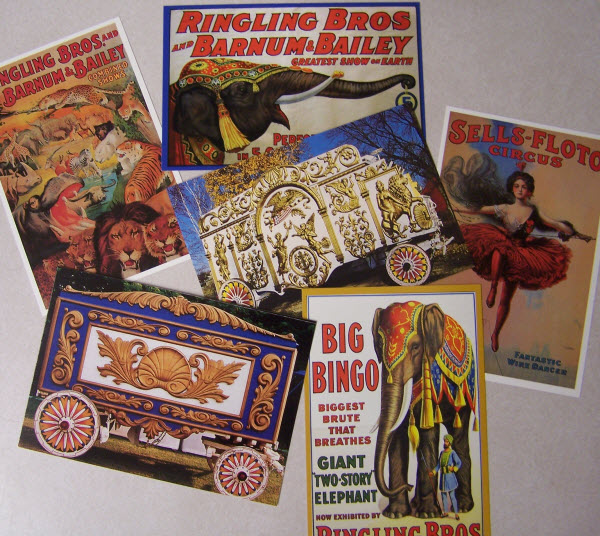 Circus World Postcards